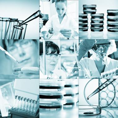 026573380c Keresd a hibát: Alapos laborvizsgálat a rejtett betegségek felkutatására a  Gellért Medical Laborban (-